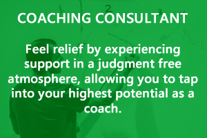 Coaches Consultant page